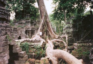 Khmer Jungle Temple Angkor Cambodia 1995